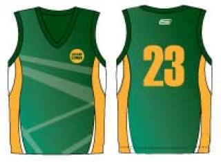 cricket-limited-over-vest